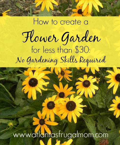 create a flower garden for under $30