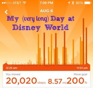 Frugal Disney Tips - Steps Taken